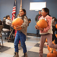 (Left to right) Madison and Krystyl pick out pumpkins and carry them back to their table to start painting them Wednesday afternoon at a pumpkin jamboree at the Office of Diné Youth in Fort Defiance.