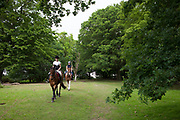 Two girls horse riding in Epping Forest, an area of ancient woodland in south-east England, straddling the border between north-east Greater London and Essex. It is a former royal forest. It covers 2,476 hectares and contains areas of woodland, grassland, heath, rivers, bogs and ponds and is a Site of Special Scientific Interest.