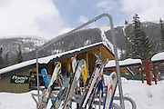 Idle skis outside of Phoenix Grill
