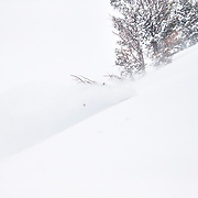 Tanner Flanagan skiing blower powder with the helmet devil in the  Teton backcountry near Jackson Hole Mountain Resort in Teton Village, Wyoming.