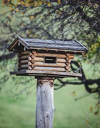 THEMENBILD - ein Vogelhaus im Herbst, aufgenommen am 06. November 2018, Leogang, Österreich // on 2018/11/06, Leogang, Austria. EXPA Pictures © 2018, PhotoCredit: EXPA/ Stefanie Oberhauser