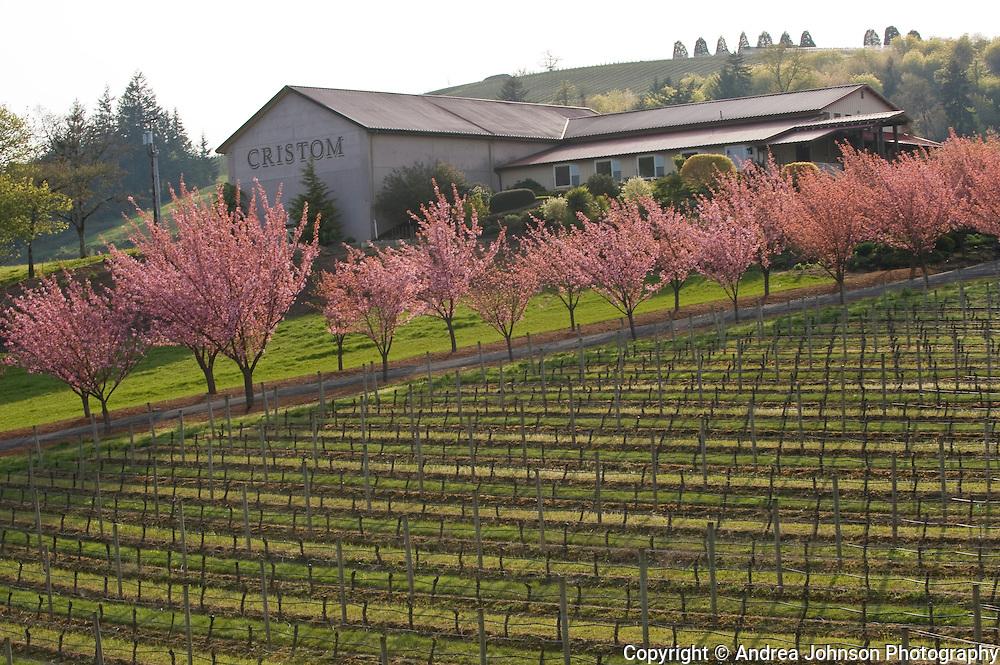 Cristom Winery, Eola Hills, Oregon