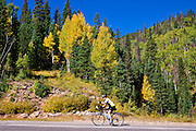 Cyclist heading up Wolfe Creek Pass on Highway 160, Rio Grande National Forest, Colorado