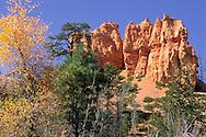 Trees and Hoodoos below the rim, Bryce Canyon, Bryce Canyon National Park, UTAH