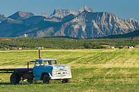 Old blue Chevy pickup truck in hay field field near Waterton Lakes National Park Alberta Canada