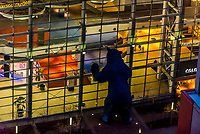 """Looking down on the 40 foot tall Big Blue Bear (titled """"I see what you mean"""" by deceased artist Lawrence Argent), which peers in the window of the Colorado Convention Center, Downtown Denver, Colorado USA."""