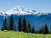 On the Excelsior Pass trail in Mount Baker-Snoqualmie National Forest, Mount Baker can be seen rising to 10,781 feet elevation across the valley. North Cascades mountain range, Washington, USA.