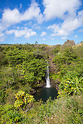 Kamae'e Falls, World Botanical Gardens & Waterfalls.at Botanical World, Hamakua Coast, Big Island of Hawaii