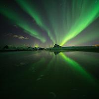 Northern Lights - Aurora Borealis reflection on Storsandnes beach, Flakstadøy, Lofoten Islands, Norway