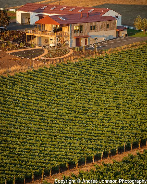 Aerial view over Brooks vineyard, winery & tasting room, Eola-Amity Hills AVA, Willamette Valley, Oregon