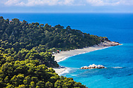 Green coast of Skopelos island