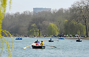 © Licensed to London News Pictures. 24/03/2012. London, UK. People boating on the Serpentine Lake People enjoy the warm sunshine today 24 March 2012 in Hyde Park Central London . Photo credit : Stephen SImpson/LNP