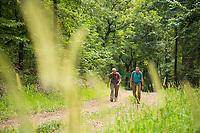 Mark Twain Wilderness, Missouri.