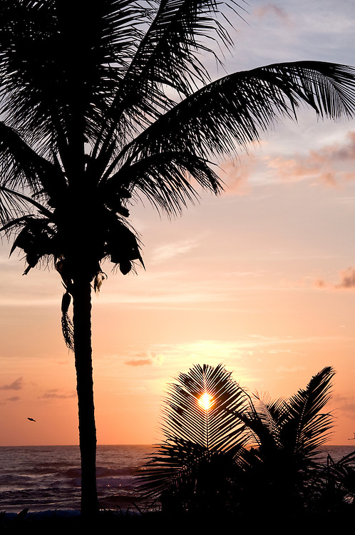 The sun peeks over the Atlantic Ocean from a beach in Tortuguero, Costa Rica on April 9, 2009.  (Photo/Billy Byrne Drumm)