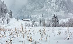 THEMENBILD - der zugefrorene Klammsee mit Schilf, aufgenommen am 03. Februar 2018, Kaprun, Österreich // the frozen Klammsee with reeds on 2018/02/03, Kaprun, Austria. EXPA Pictures © 2018, PhotoCredit: EXPA/ Stefanie Oberhauser