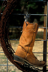 Lone cowboy boot hanging on a fence