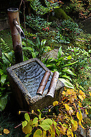 Jisso-in Tsukabaim kakei, water basin, tsukubai, japanese basin, chozubachi, chozuya, temizuya, tsukubai, Japanese Water Basin, Tranquility;  Simplicity; serene, serenity, exterior space, nature, pattern, scenic, visual effect, no people, scenery, tranquil, tranquility, calm, historic sites, natural light, natural beauty, spirituality, simplicity, natural, landscapes, inspiration, inspiring, calming, calms, contemplative, meditative, mellow, peaceful, pleasant, beautiful, calmness,  idyllic, ideal, peacefulness, serenity, serene, nobody,