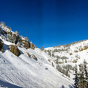 The scars of an in-bounds avalanche at Jackson Hole Mountain Resort on 12-1-2018. 5 people were buried to varying degrees which included some children from the Jackson Hole Ski and Snowboard Club.