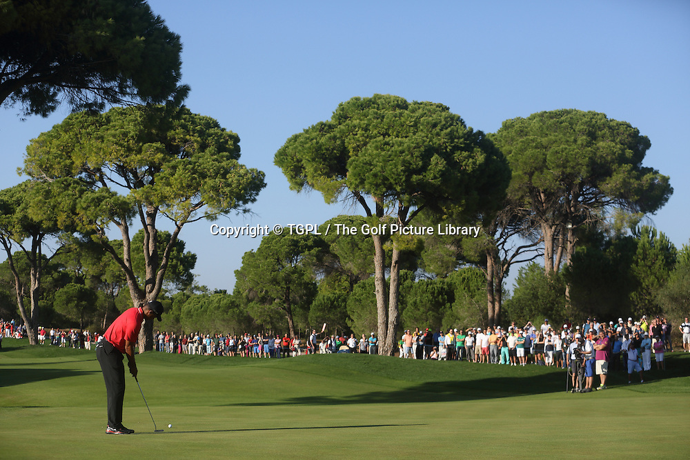 Tiger WOODS (USA) during fourth round Turkish Airlines Open by Ministry of Culture and Tourism 2013,Montgomerie Course at Maxx Royal,Belek,Antalya,Turkey.