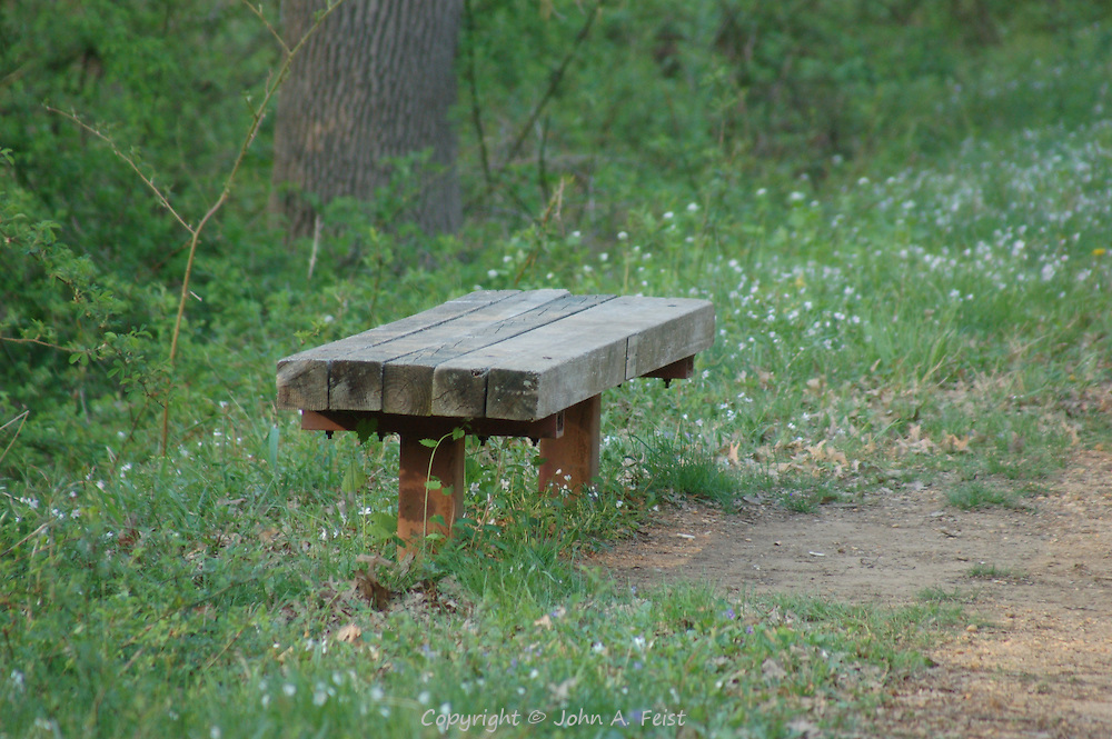 A nice place to stop for a rest and enjoy the spring flowers along the tow path of the D and R Canal in Hillsborough, NJ