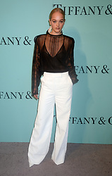 Model Jean Campbell attending Tiffany & Co Celebrates The 2017 Blue Book Collection at ST. Ann's Warehouse on April 21, 2017 in New York City, NY, USA. Photo by Dennis Van Tine/ABACAPRESS.COM