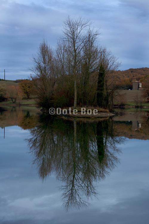 trees on a little lake island