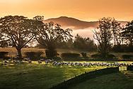 Drinkstone, Hawick, Scottish Borders, Scotland, UK. 19th September 2020. Morning fog lies in the Teviot valley.