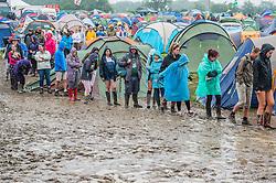 Morning queues for the composting toilets. The 2015 Glastonbury Festival, Worthy Farm, Glastonbury.