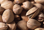 Close up selective focus photograph of Pistachios in their shells