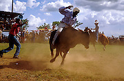 28 JULY 2002 - JOVELLANOS, MATANZAS, CUBA: Bullriding at an amateur rodeo in the town of Jovellanos, province of Matanzas, Cuba, July 28, 2002..PHOTO BY JACK KURTZ