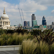 View of St. Paul's and the city with greenary in the foreground.