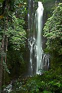 Hana Waterfall Road to Hana Maui Hawaii