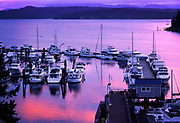 The marina at Friday Harbor on San Juan island, glowing in the predawn light