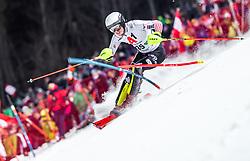 "29.01.2019, Planai, Schladming, AUT, FIS Weltcup Ski Alpin, Slalom, Herren, 1. Lauf, im Bild Elias Kolega (CRO) // Elias Kolega of Croatia in action during his 1st run of men's Slalom ""the Nightrace"" of FIS ski alpine world cup at the Planai in Schladming, Austria on 2019/01/29. EXPA Pictures © 2019, PhotoCredit: EXPA/ JFK"