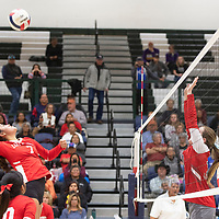 Pine Hill's Pauline Martinez (7) spikes the ball against Logan Friday afternoon at Rio Rancho High School in the NMAA Class 1A State Volleyball tournament in Rio Rancho.