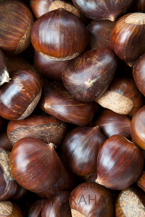 Fresh Chestnuts for culinary use