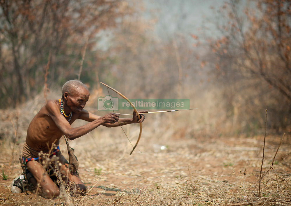 San (also called Bushmen) are an ethnic group of South West Africa. They live in the Kalahari Desert across the borders of Botswana, Namibia, Angola and South Africa. Most of the 100,000 San people live in Botswana (around 55,000) but about 25,000 live in Namibia..The San have a foraging lifestyle based on the hunting of wild animals (usually with bows and poison arrows and spears) and the gathering of veld food. The fact they are hunter gatherers accounts for their nomadic way of life. Their lifestyle is particularly adapted to the hard conditions of the Kalahari Desert. They know where waterholes are located and carry water in ostrich eggshells. They drink water from roots and tubers they find by digging the ground. The San are intelligent trackers and know the habits of their prey. they hunt game of all size : mice, buffalos, antelopes, and even giraffes sometimes. They also eat various types of insects especially during the dry season.. Sans are part of the Khoisan language peoples (including the herding tribe of the Khoikhoi) who speak a language based on click sounds (consonants), made with specific moves of the tongue..Naming.Their is a debate about these people should be called as the term of San didn't used to be used by San people themselves as they didn't use to apprehend themselves as unified ethnic group. Indeed there is a various array of San subgroups. But this issue also arose because the words of San and Bushman (coming from the dutch word Bosjes Man) also have been used by outsiders (european settlers in particular) to refer to them, often with pejorative connotations..The different San language groups of Namibia met in late 1996 and agreed to use the general term San to designate them externally. This word was historically applied by their ethnic relatives and historic rivals, the Khoikhoi. This term meaning outsider in the Nama language (the language of the Khoikhois), enables the distinction between Bushmen from what the Khoikhoi called t