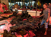 Dogs for sale as food at Tomohon extreme market, Minahasa, north Sulawesi, Indonesia.