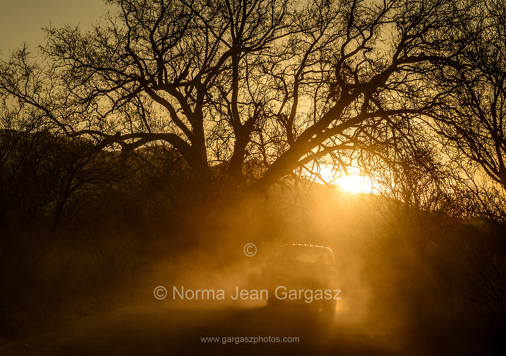 A vehicle drives on Forest Service Road 92, a dirt road in the grasslands near Gardner Canyon, north of Sonoita, Arizona, USA.