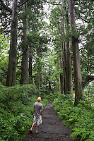 There were originally 53 posts along the Old Tokaido Road, or Eastern Coastal Road.  Tokaido is now both the main central train line as well as the original Shinkansen Bullet Train from Tokyo to Kyoto.  But of the original trail only about 9 km still exists, most of it in Hakone.