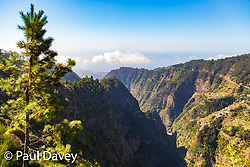 Precipitous cliffs and deep valleys are up much of the volcanic landscape of Madeira's Valley of Nuns. MADEIRA, September 23 2018. © Paul Davey