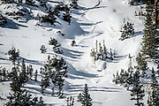 """SHOT 1/26/16 12:02:31 PM - Jillian Vogtli of Park City, Utah skis fresh powder at Solitude Mountain Resort. Solitude is a ski resort located in the Big Cottonwood Canyon of the Wasatch Mountains, thirty miles southeast of Salt Lake City, Utah. With 66 trails,[1] 1,200 acres (4.9 km2) and 2,047 feet (624 m) vertical, Solitude is one of the smaller ski resorts near Salt Lake City. It is a family-oriented mountain, with a wider range of beginner and intermediate slopes than other nearby ski resorts; 70% of its slopes are graded """"beginner"""" or """"intermediate,"""" the highest such ratio in the Salt Lake City area. Solitude was one of the first major US resorts to adopt an RFID lift ticket system, allowing lift lines to move more efficiently. (Photo by Marc Piscotty / © 2016)"""