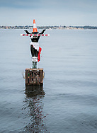 The statue of Eliza on Crawley Bay marker for local sentiment, this time it is Covid-19 and a sign asking people to maintain 1.5 metre social distancing