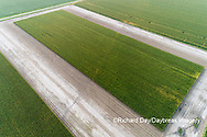 63801-10712 Corn field after it's been cut for silage-aerial Marion Co. IL