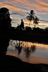 A Tanzanian rides their bike home near sunset in the village of Mnolela. The dense forest and tall grasses make villagers vulnerable to lion attacks. They have to stay late in the evening in their fields to protect their crops from rampaging monkeys who like to eat the rice and corn, forcing them to walk at sunset, the time of day when lions are out looking for prey.  Ami Vitale