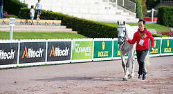 Milner Lee Sophie, (HKG), The Silver Surfer<br /> Alltech FEI World Equestrian Games™ 2014 - Normandy, France.<br /> © Hippo Foto Team - Jon Stroud<br /> 25/06/14
