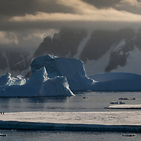 'Ice Island Cruise' – Yalour Islands, Antarctica<br /> <br /> Gentoo penguins ride on an ice sheet as it takes its place alongside large pinnacled and drydocked icebergs. The tallest of the two icebergs in this image is approximately 90 m (300 ft) high. The Yalour Islands is a group of islands and rocks 2.4 km (1.5 mi) long in the south part of the Wilhelm Archipelago.