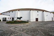 Ronda, Andalusia, Spain Bronze Bull Statue Outside the Bullring