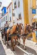 Obidos, Portugal.