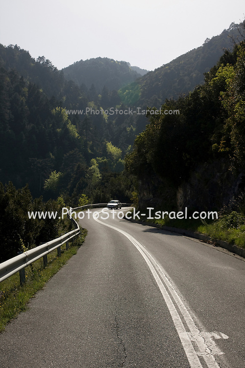 Greece, Macedonia, Mount Olympus National Park a road through the forest